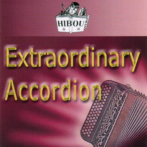 Different Classic And Modern Accordions